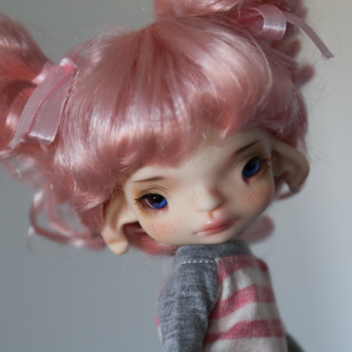 Fenix Light pink with Sensei Face up