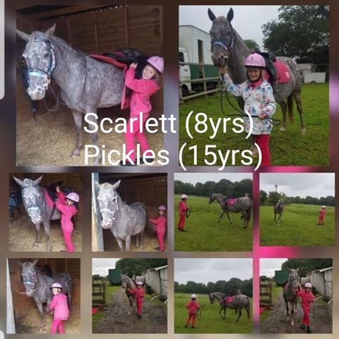 Scarlett Wheatley & Pickles
