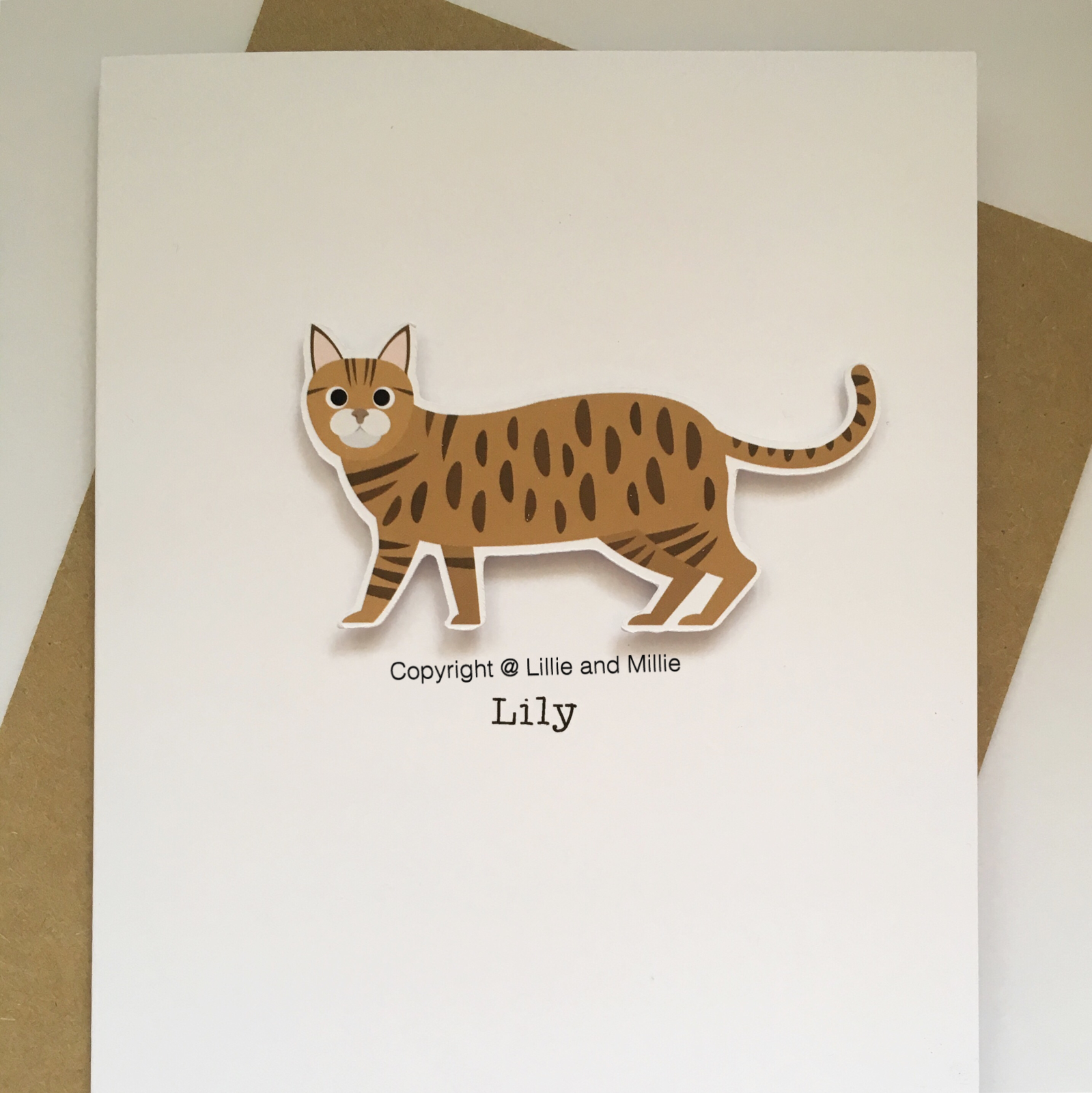 Cute and Cuddly American Shorthair Cat Greetings Card