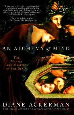 Alchemy of Mind hardcover