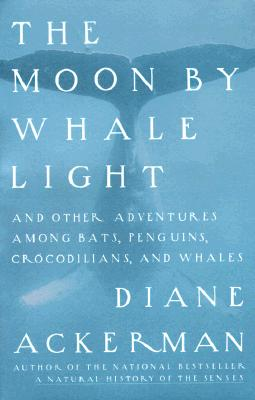The Moon by Whale Light book