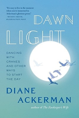 Dawn Light book
