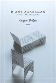Origami Bridges book