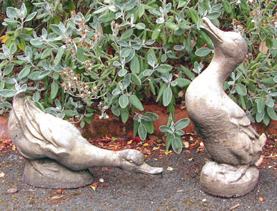 STONE GARDEN courting drake and duck birds