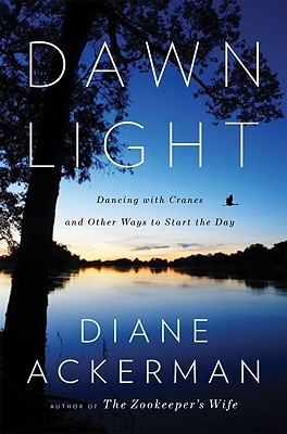Dawn Light hardcover