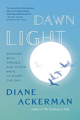 Dawn Light paperback
