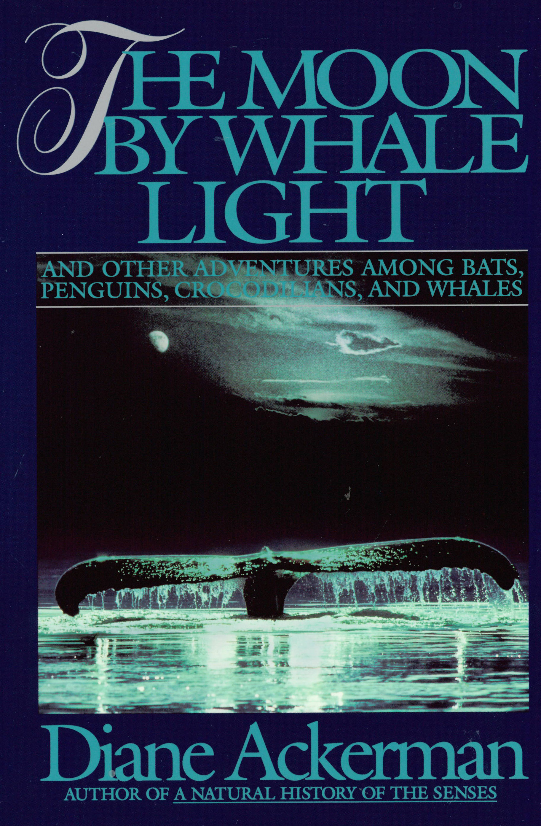 Moon by Whale Light hardcover