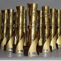 liverpool music awards trophies