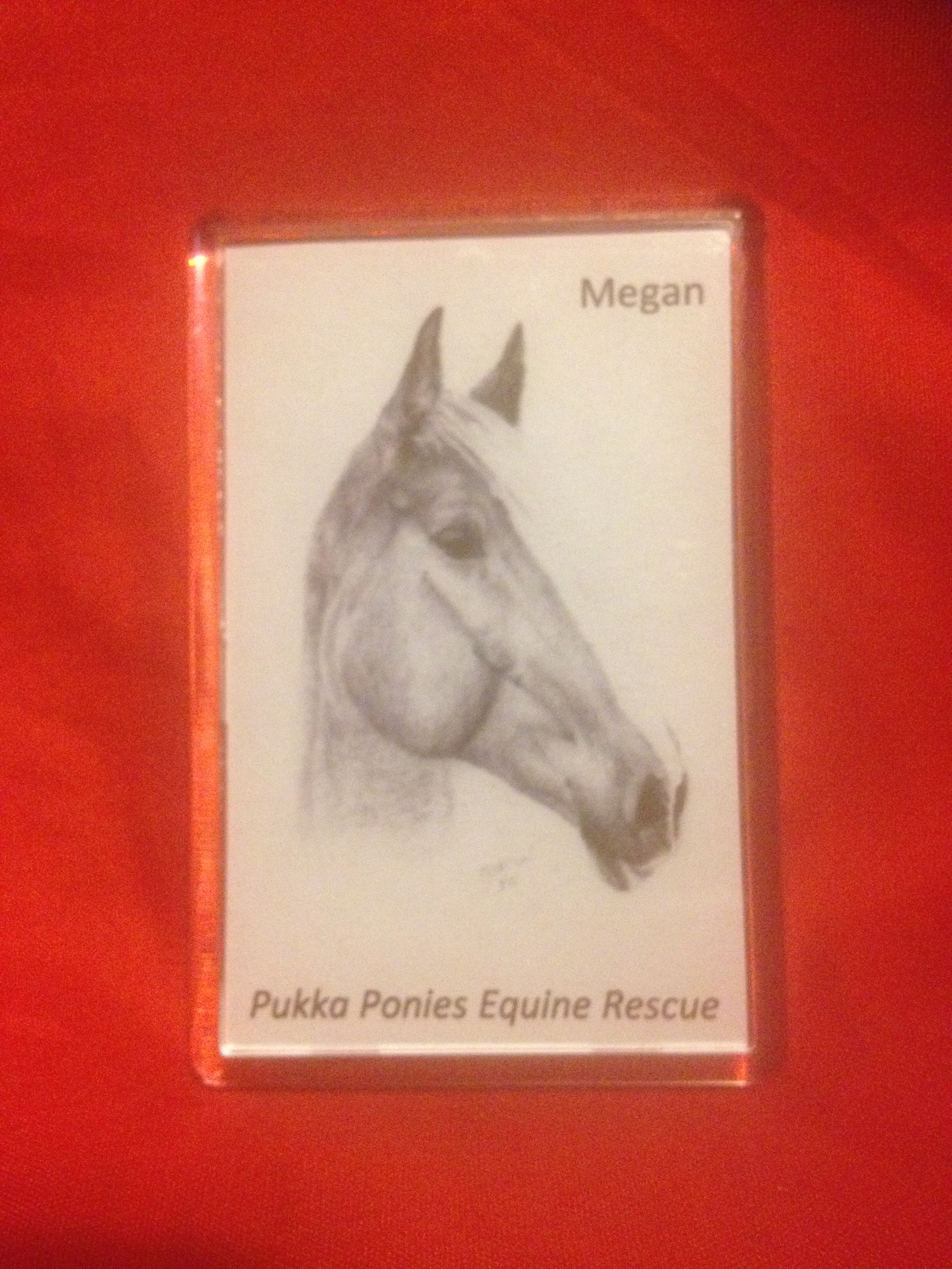 Fridge Magnet - Megan Portrait