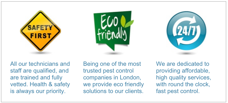 London pest services image