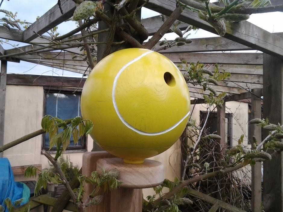 Tennis ball bird box