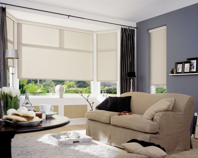 BACK. Roller Blinds