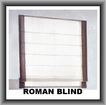 Electric Roman Blinds