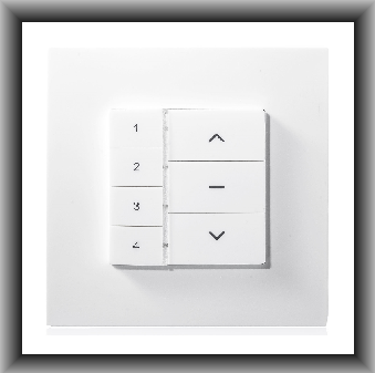 YR3144 Remote Control Wall Switch