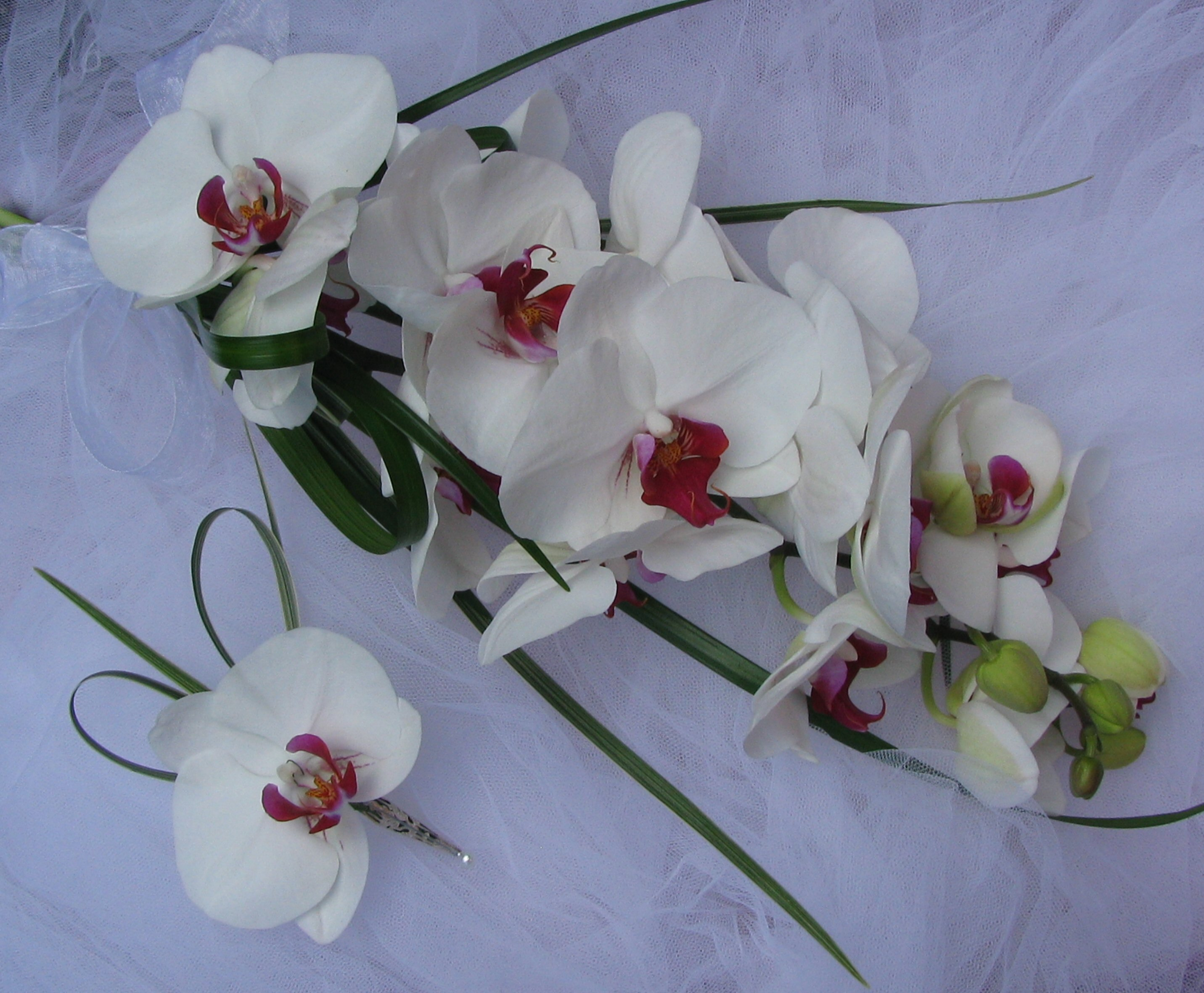 Orchid Tied Bouquet and Buttonhole