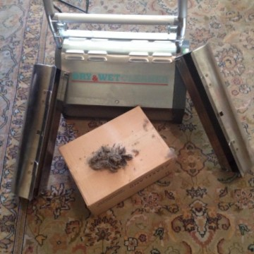 Hairs and soiling removed from rug using a pro35 crb