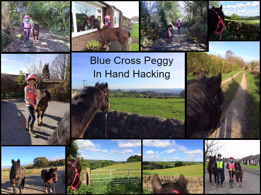 Charlotte Bannister & Blue Cross Peggy