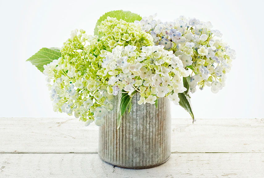 basic flower arrangements  hydrangeas, Natural flower