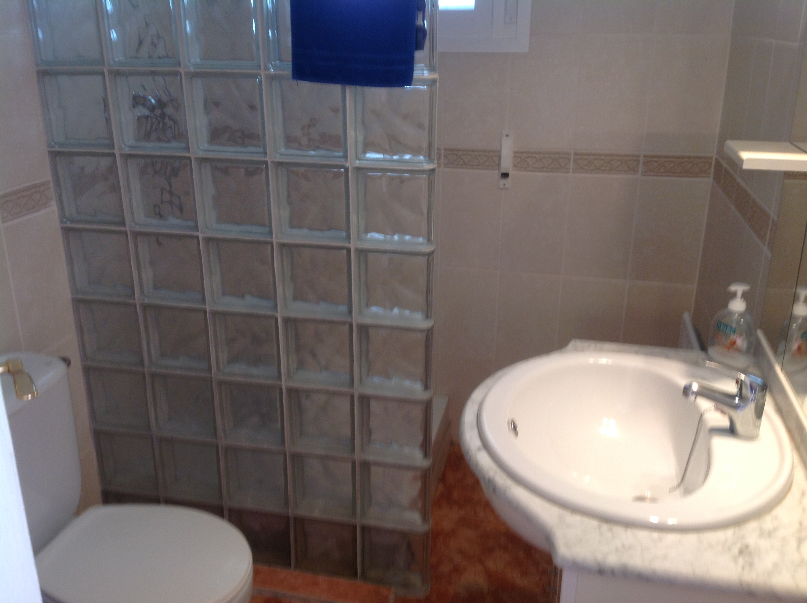 BEFORE - SHOWER ROOM