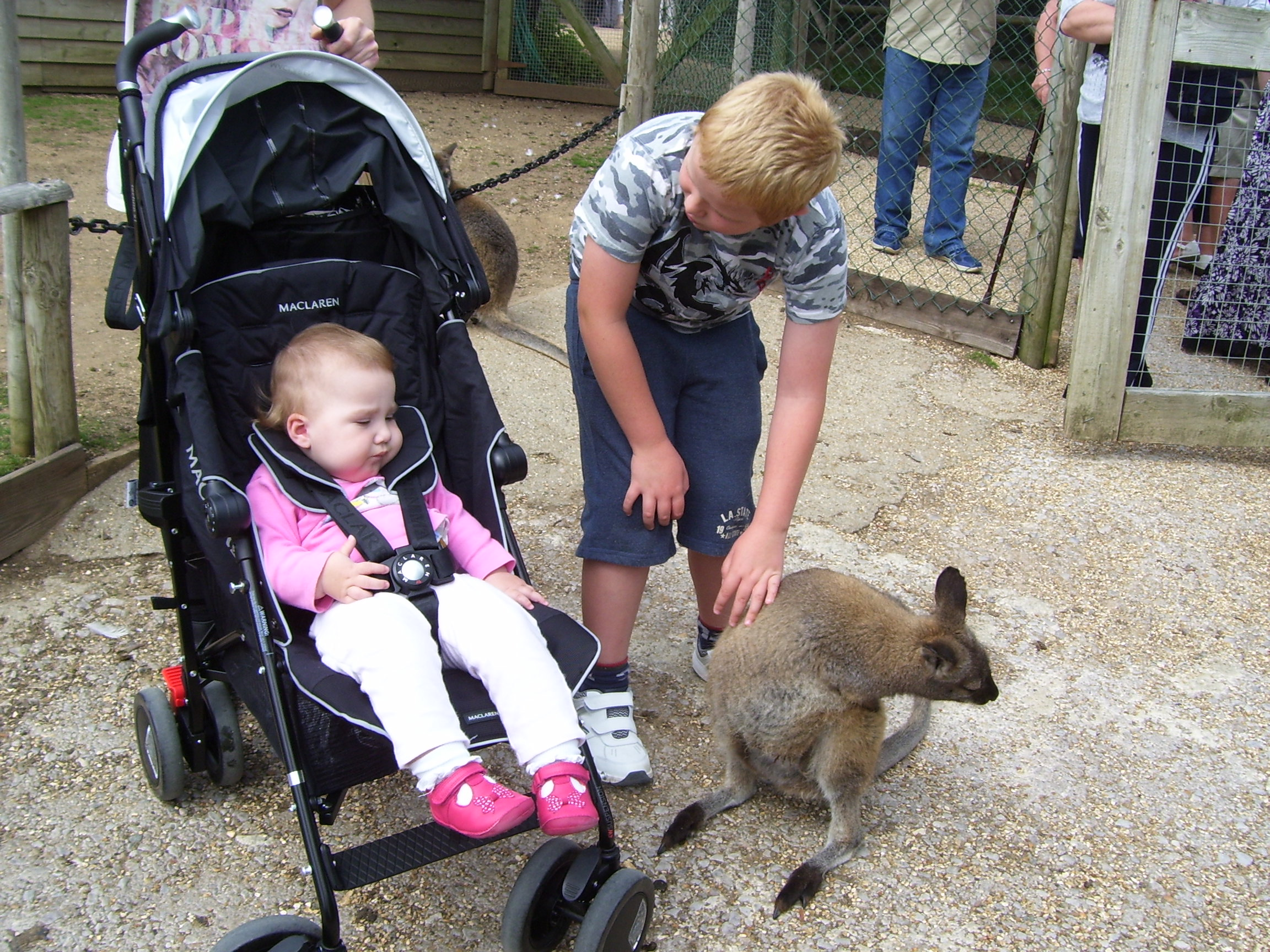 children at zoo