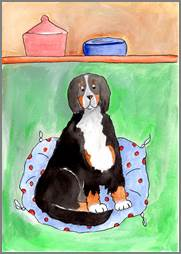 Bernese Mountain Dog print by Sarah Collins