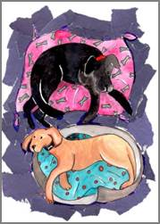 Black & Yellow Labs print by Sarah Collins