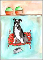 Border Collie print by Sarah Collins