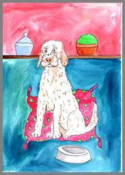 Italian Spinone print by Sarah Collins