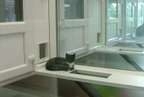 Peticular Pens - Bespoke uPVC Cattery - Lords Hill Cattery