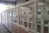 Peticular Pens - Hygienic uPVC Cattery - Lords Hill Cattery Build - Exercise Run