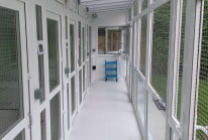 Peticular Pens - Hygienic uPVC Cattery - Cats @ Ratcliffe Luxury Cat Hotel - Safety Corridor