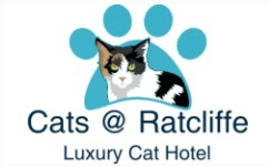Cats @ Ratcliffe Luxury Cat Hotel - Gallery