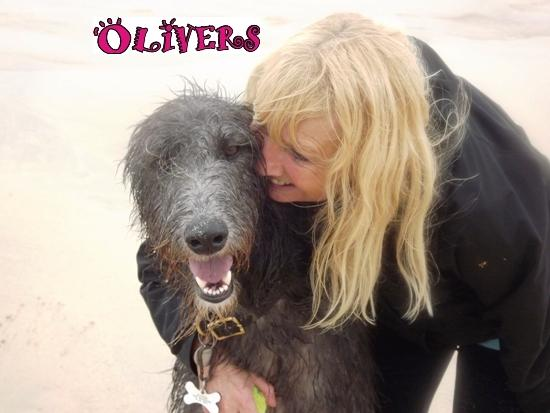 pet sitters Cornwall