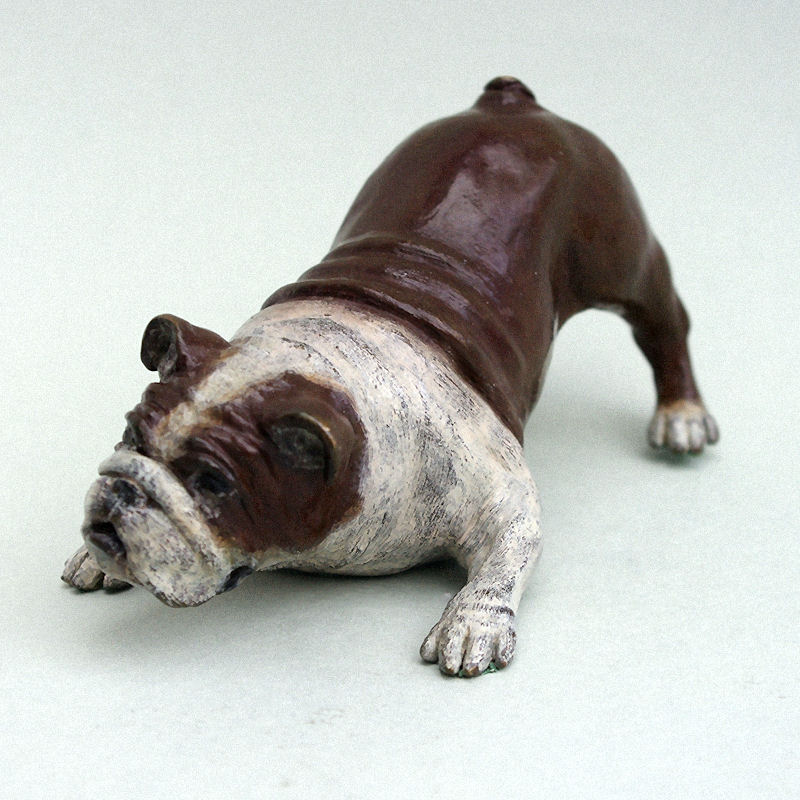 Bronze playful bulldog