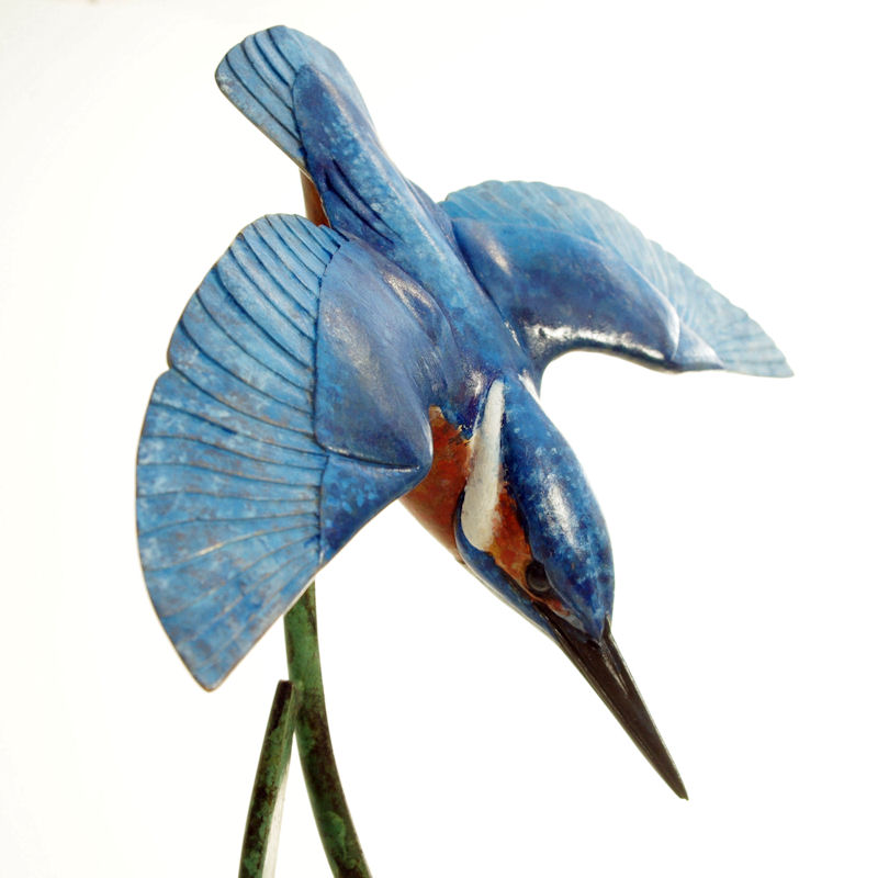 Bronze Kingfisher diving