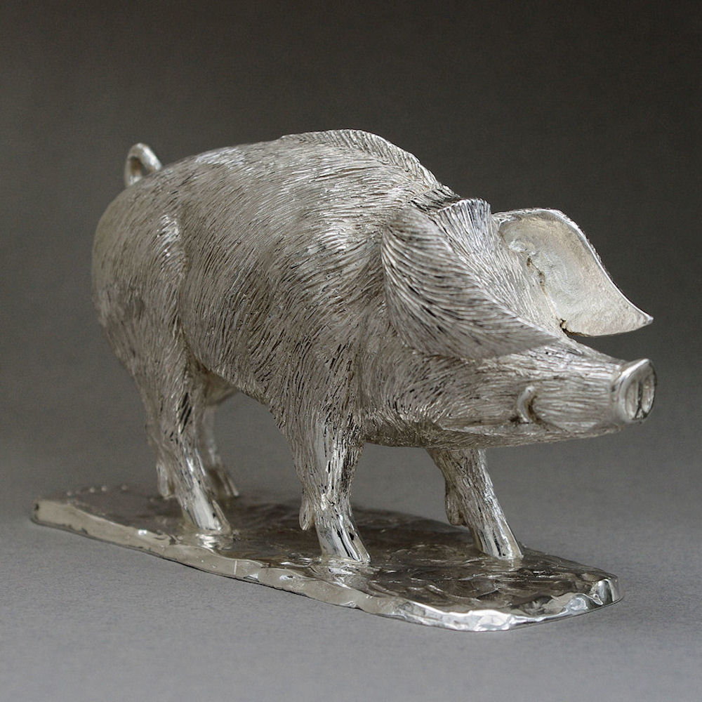 Silver Hampshire Hog