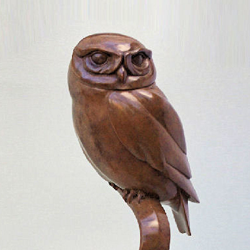 Bronze Little Owl