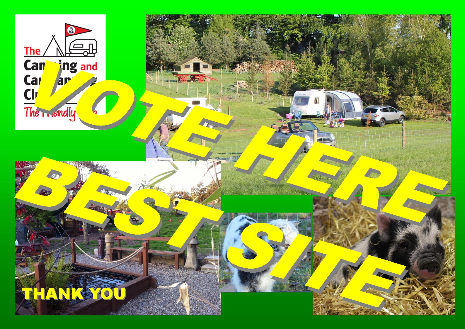CLICK HERE TO VOTE FOR BEST SITE