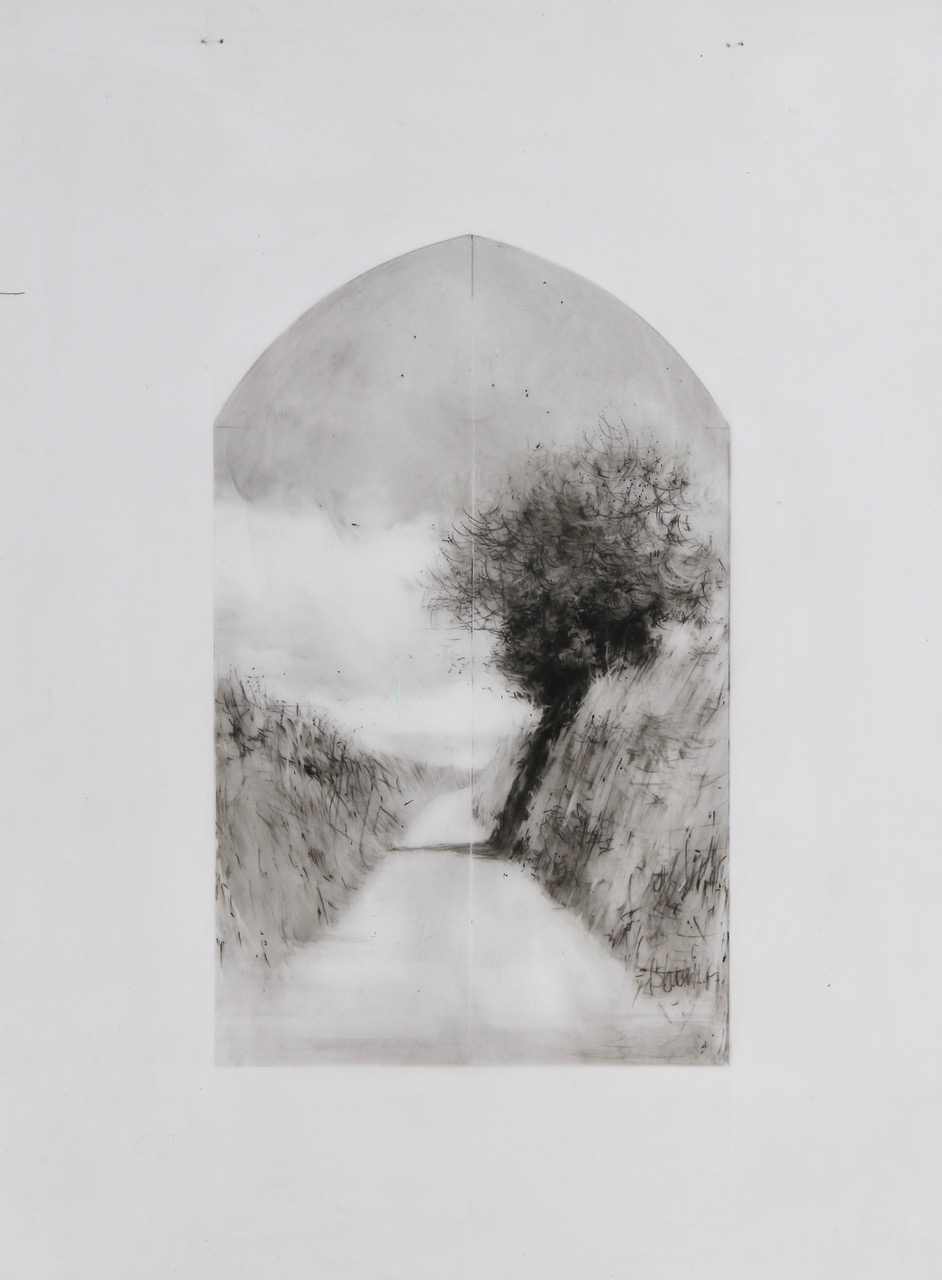 Devon Hedge Drawing 16-17 by Laurie Steen