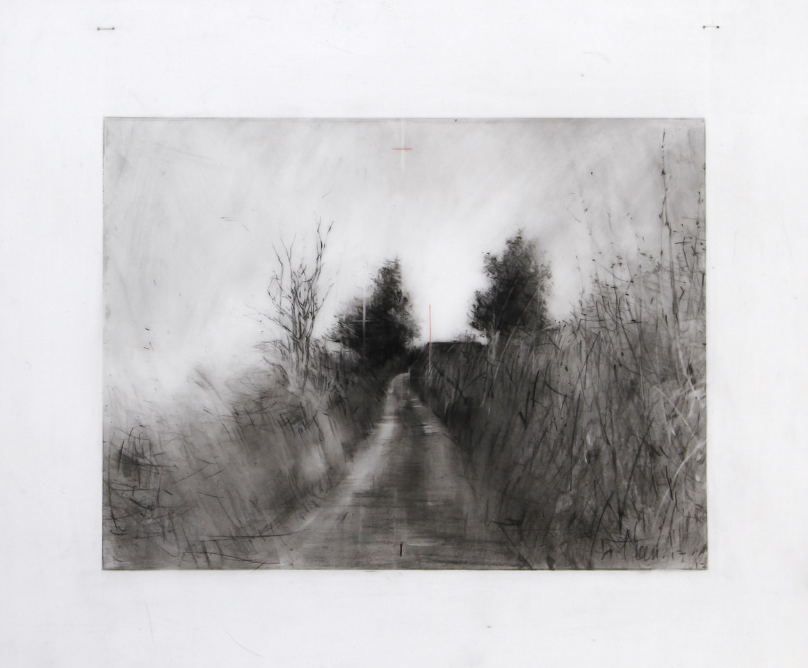 In Search of Green, Drawing 14-17 by Laurie Steen
