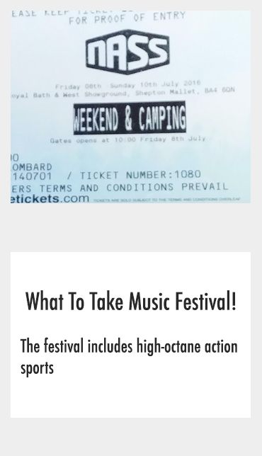 what to take to music festival