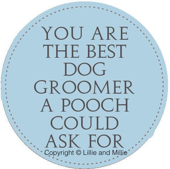 You are the best dog themed card range Dog groomer thank you