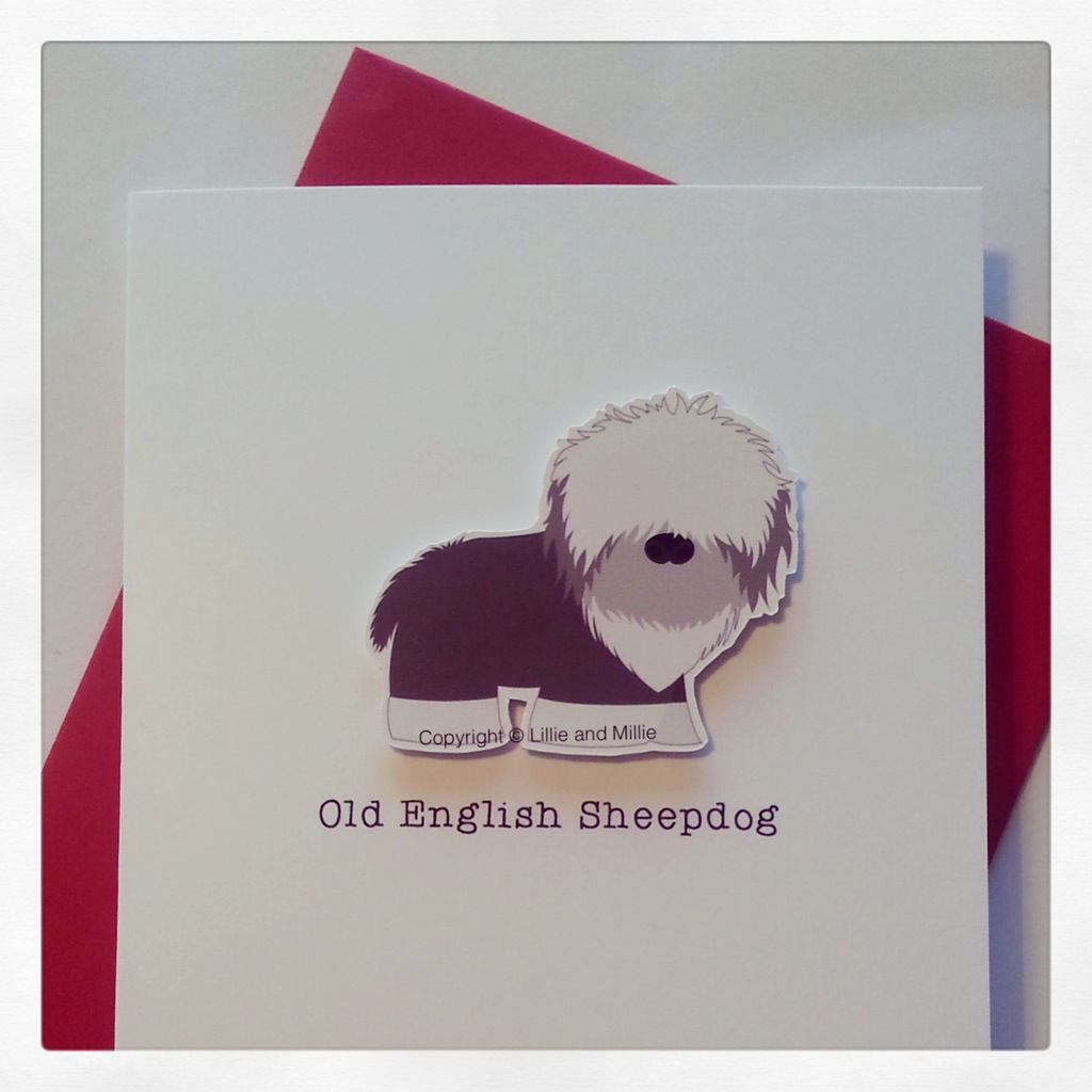 Cute and Cuddly Old English Sheepdog Breed Card