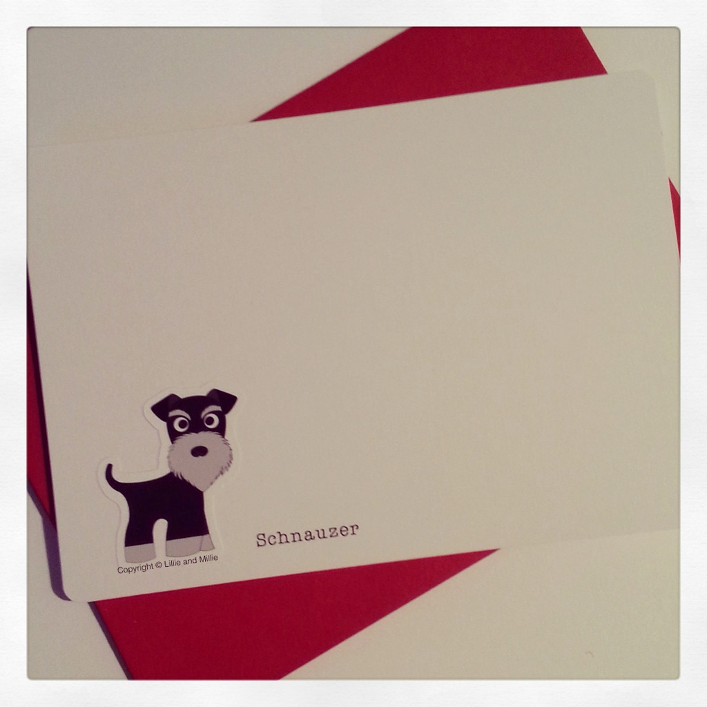 Cute and Cuddly Black and Silver Schnauzer Notelet Cards