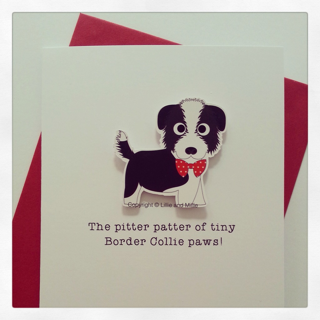 Cuddly Border Collie Pitter Patter Puppy Card