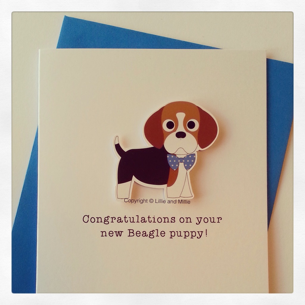 Cute and Cuddly Beagle Blue Bow Congratulations Puppy Card