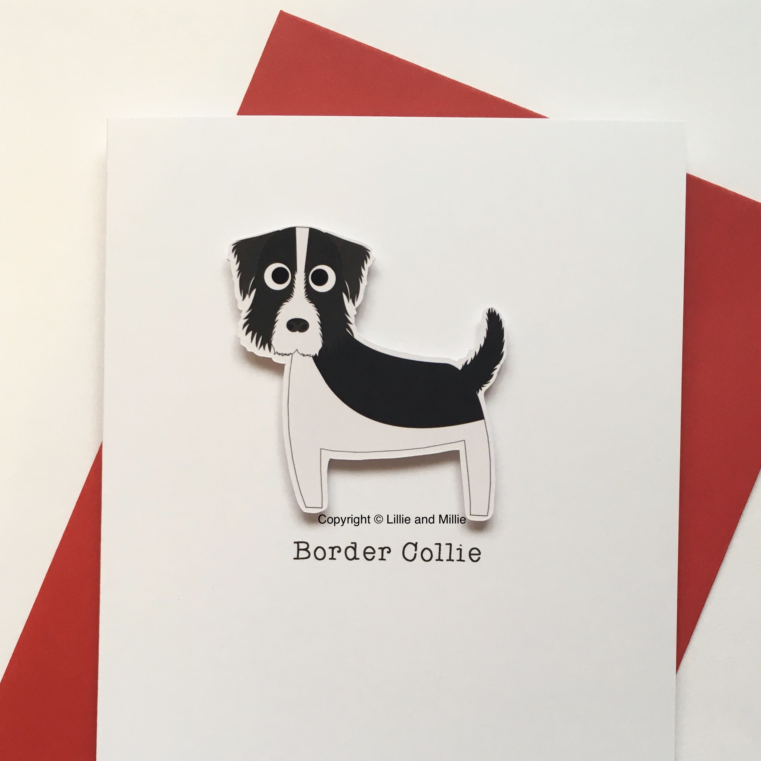 Cute and Cuddly Border Collie Breed Card