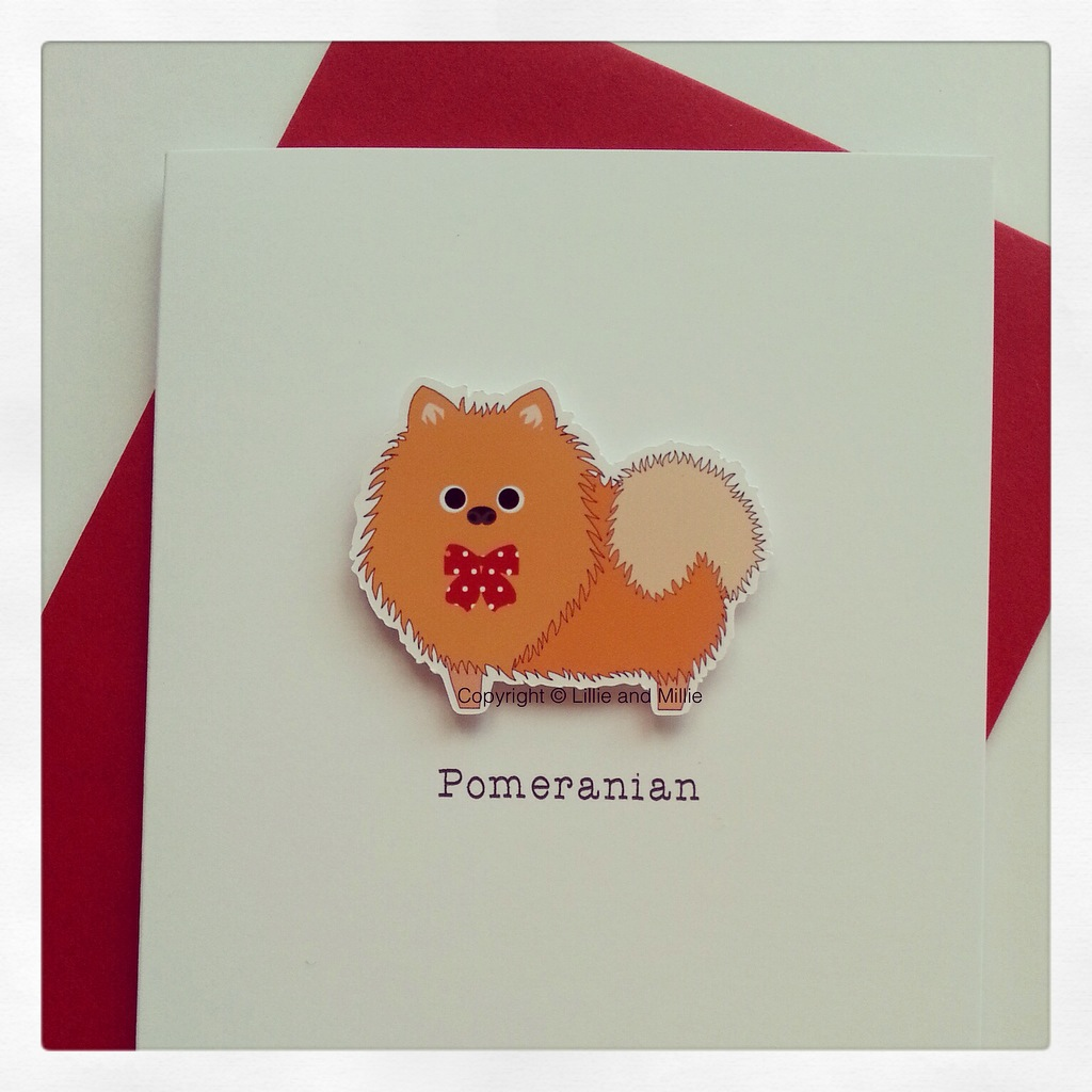 Cute and Cuddly Pomeranian Breed Card
