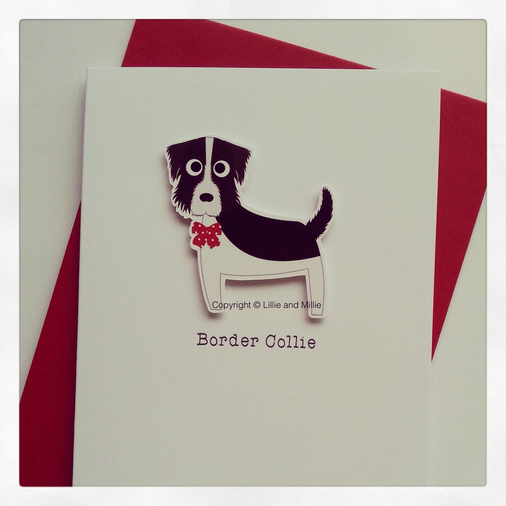 Cute and Cuddly Border Collie Greetings Card