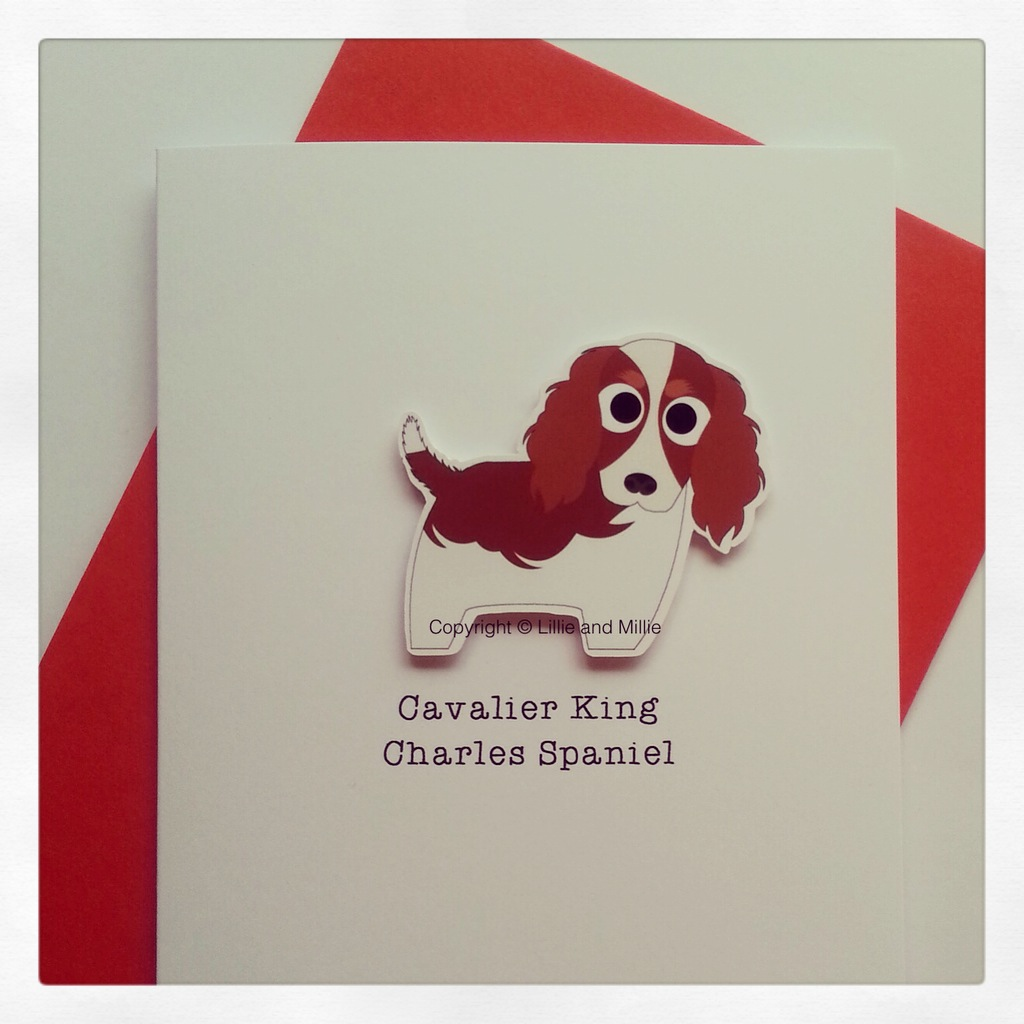 Cavalier King Charles Spaniel Dog Greeting Card ion